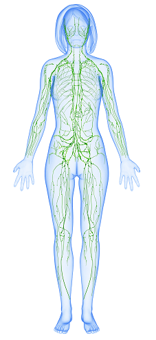 7 Ways to Improve Lymphatic Health in Dallas
